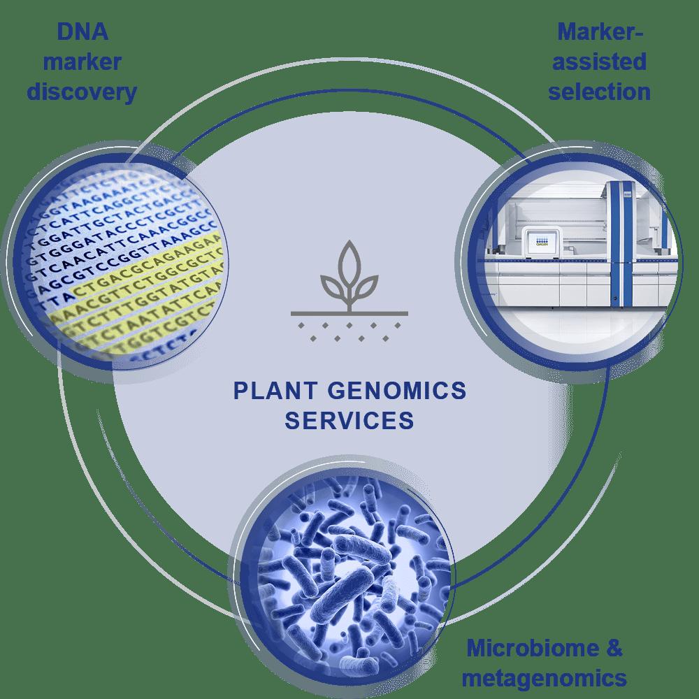 Plant genomics services