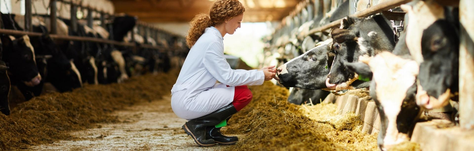Eurofins Animal Genomics Services