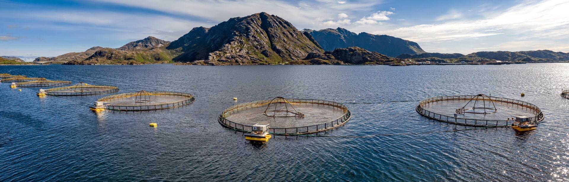 Eurofins Aquaculture Genetics Services