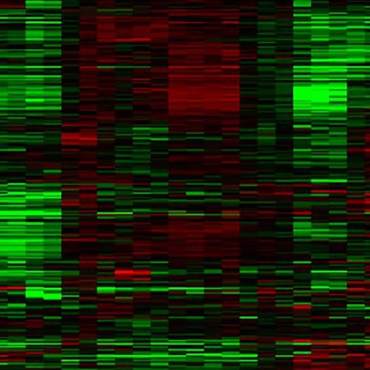 Transcript and RNA